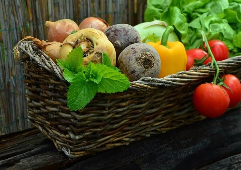 home_vegetables_company7
